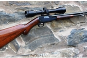 Browning 22 pump action for sale