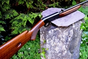 Browning 22 semi auto for sale